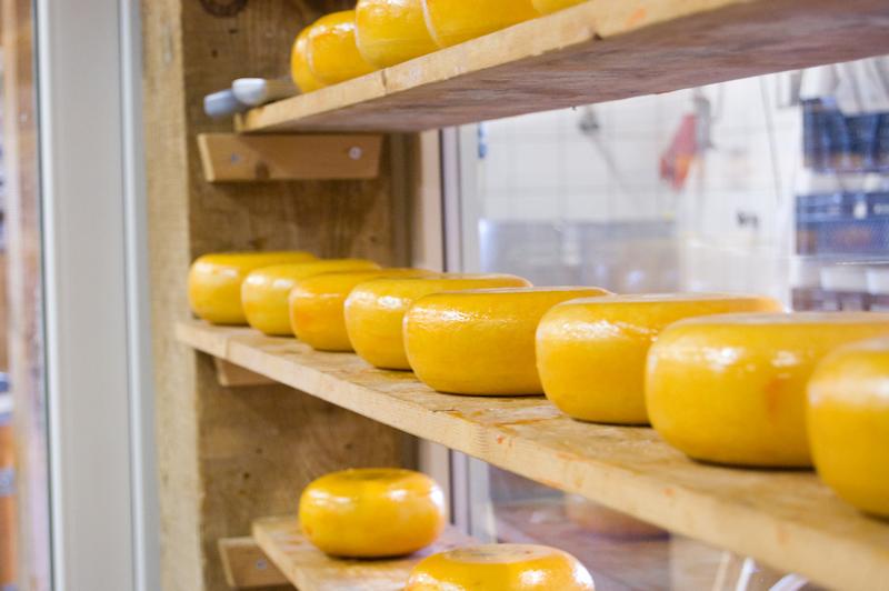 Niederlande Käse
