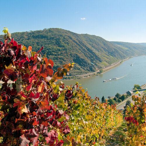 Deutschland - Pfalz - Rhein