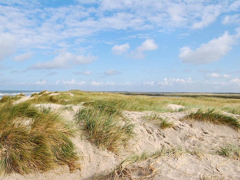 Nordsee - Dünen Dänemark