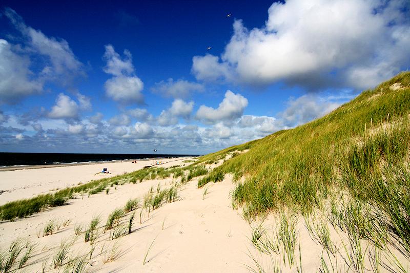Schleswig-Holstein - Insel Amrum