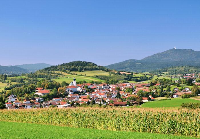 Bayerischer Wald - Lam