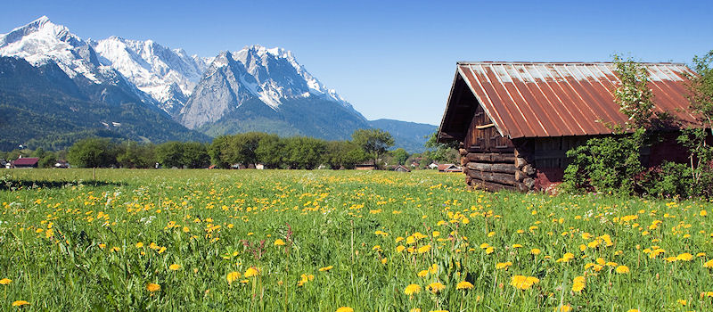 Garmisch-Partenkirchen - Sommerwiese