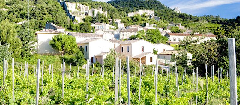 Weinanbaugebiete - Frankreich Provence