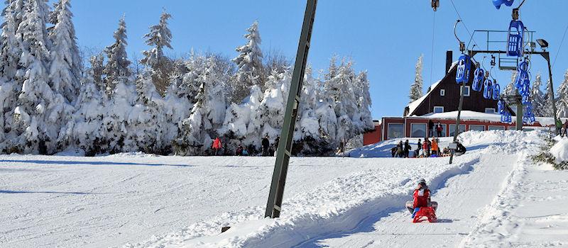 Wintersport im Harz - Rodelbahn