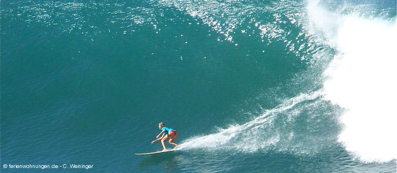 Hawaii - Surferin