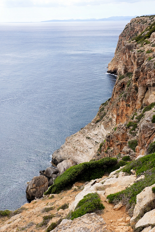 Punta Llobera