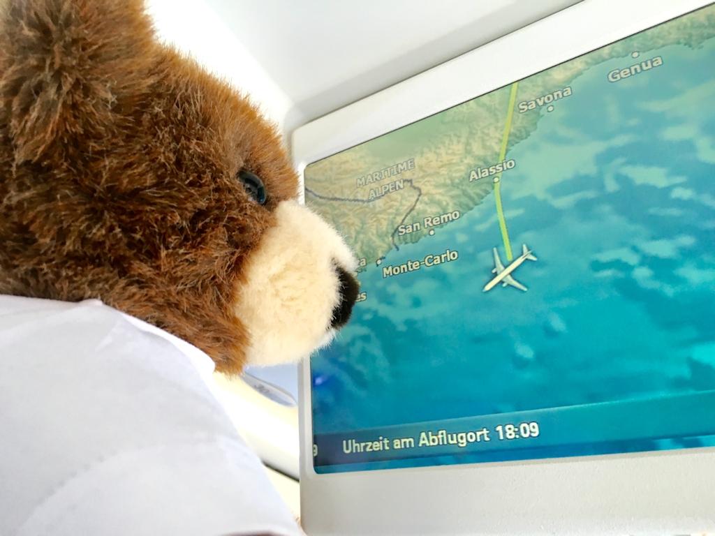 Der Urlaubär verfolgt seinen Flug