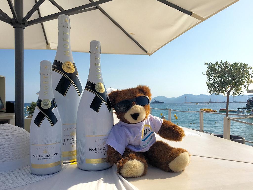 Der Urlaubär nach seiner Ankunft in Nizza