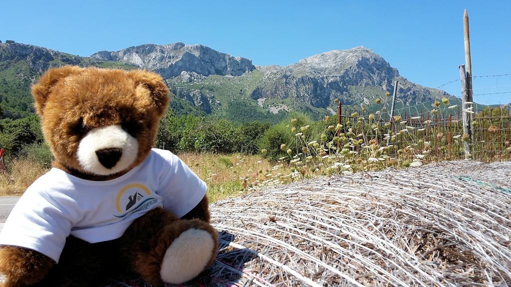 Abschied vom Urlaubär auf Mallorca - Der Start in die wilde Bergwelt von Mallorca