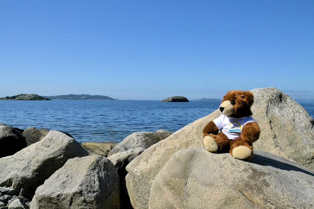 Der Urlaubär genießt den Blick über den Fjord bis nach Stavanger (im Hintergrund)