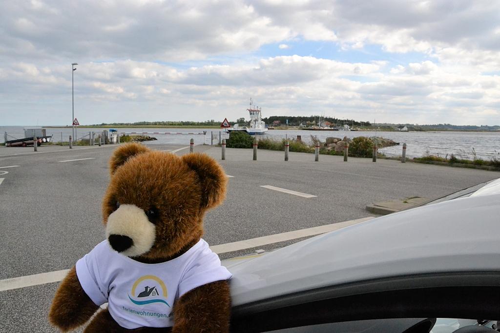 Der Urlaubär wartet auf die Fähre über den Randers Fjord