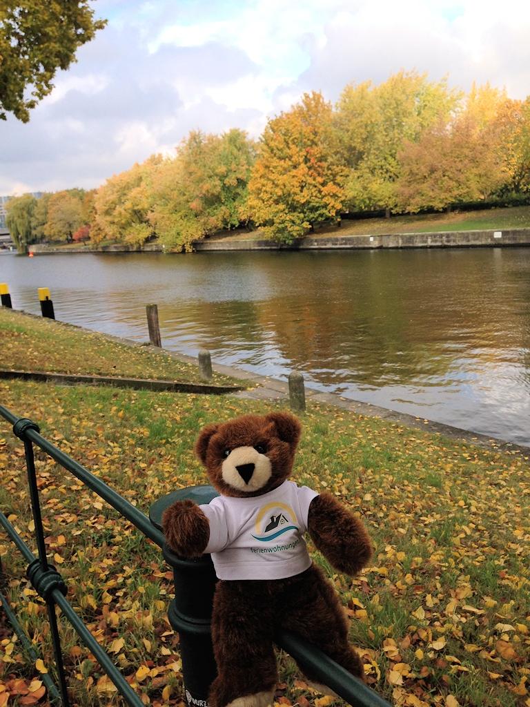 Der Urlaubär in Herbststimmung an der Spree in Berlin