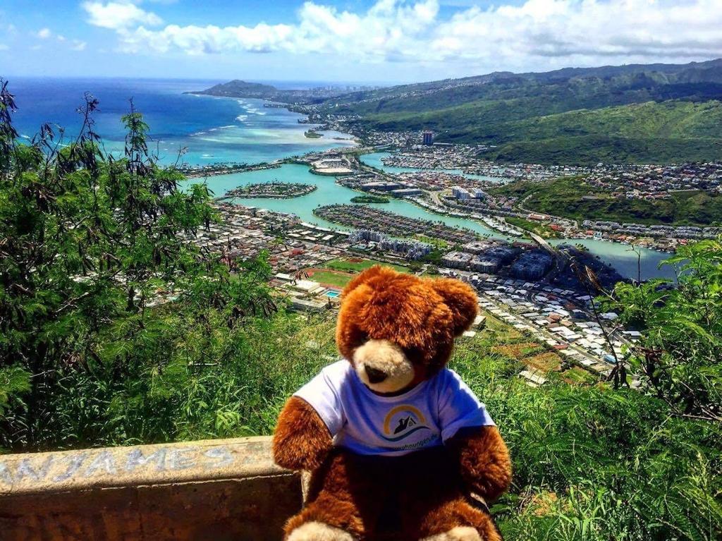 Der Urlaubär wandert auch auf Hawaii