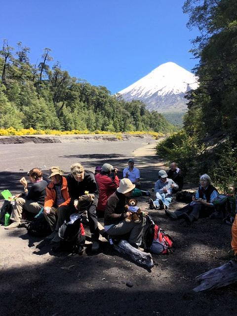 Rast mit Vulkan im Hintergrund