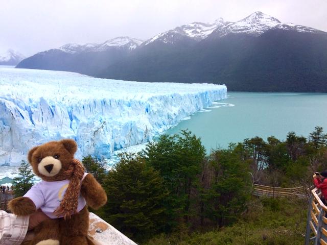 Der Urlaubär am Perito-Moreno-Gletscher