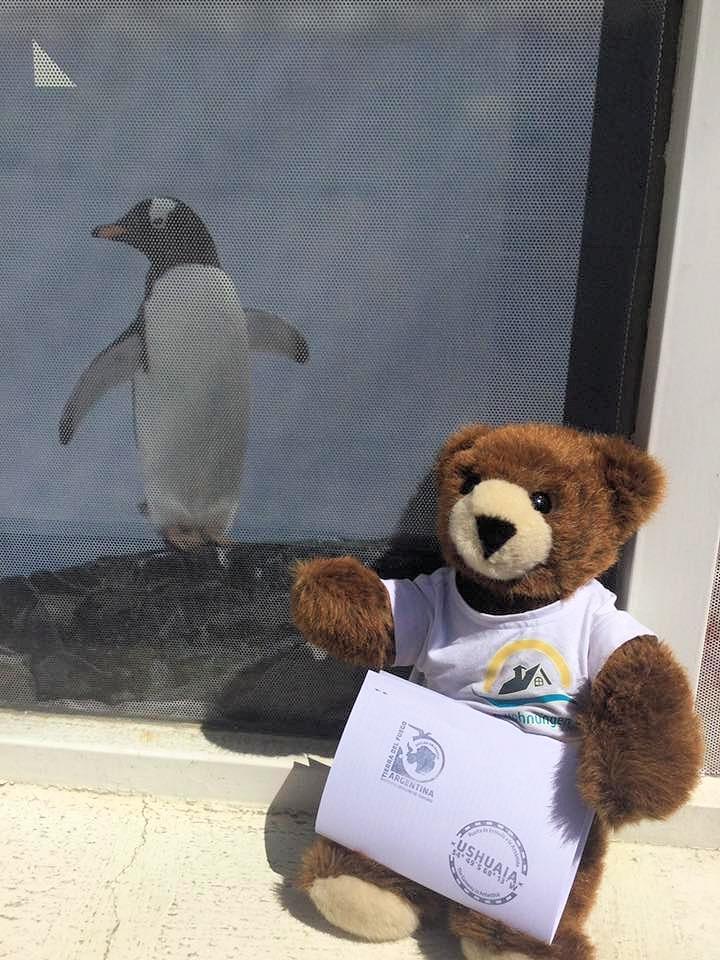 Der Urlaubär mit seinem Dokument aus Ushuaia - Urlaubär am Ende der Welt