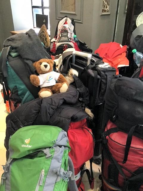 Abschied von Südamerika für den Urlaubär - Der Urlaubär sitzt auf gepackten Koffern ...