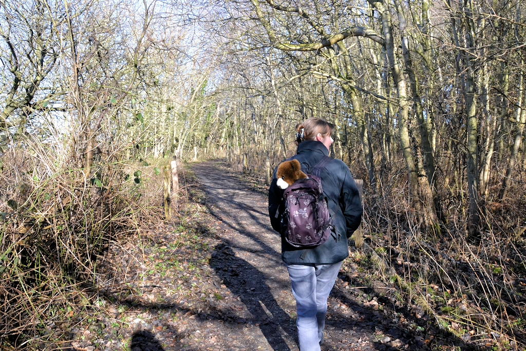 Wanderweg auf der Geltinger Birk