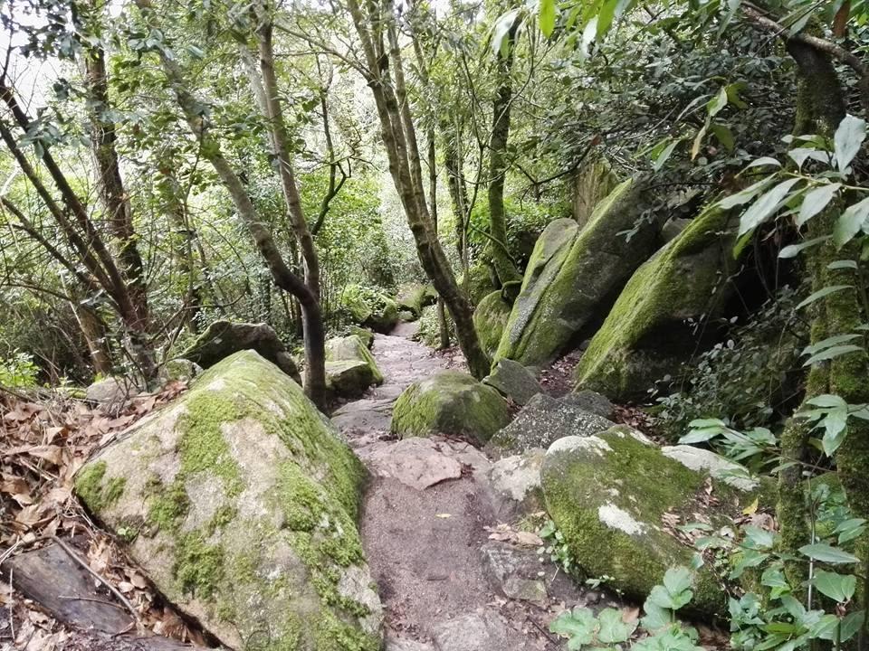 Wanderung von Pena nach Sintra