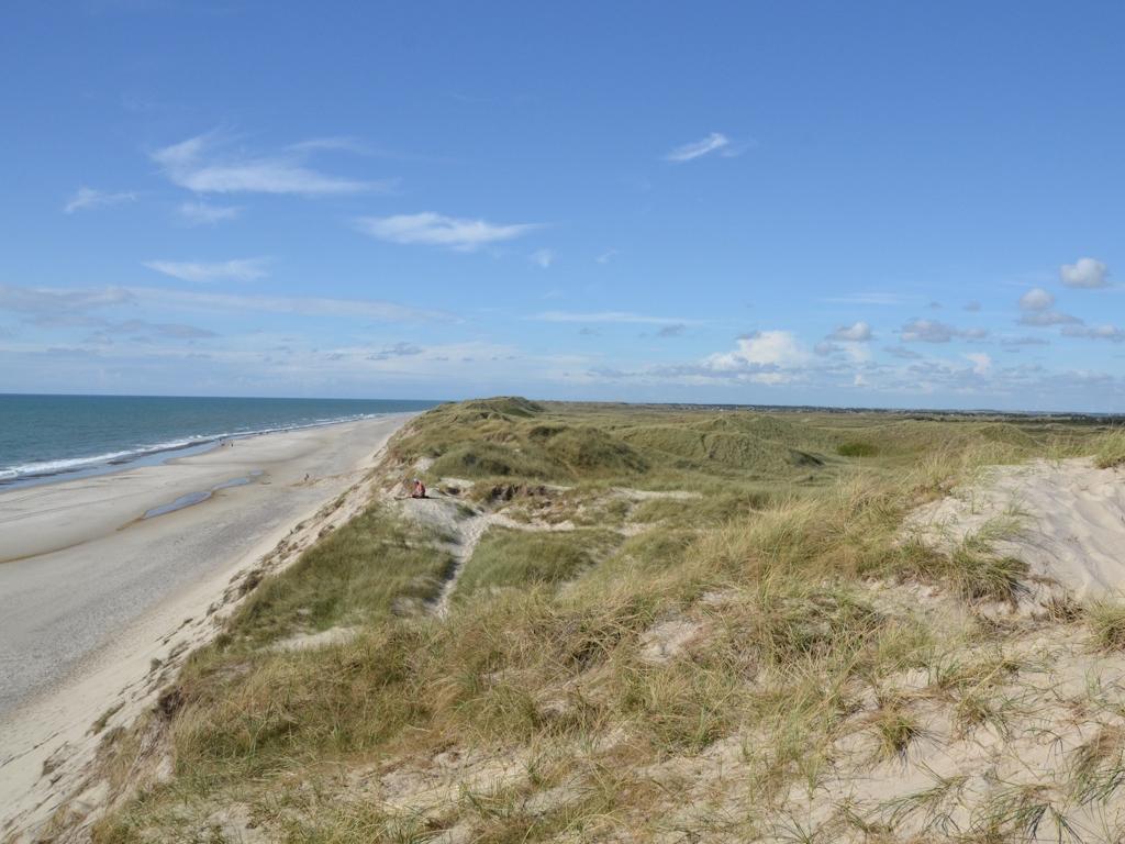 Unberührte Strand- und Dünenlandschaft an der Nordsee in Dänemark