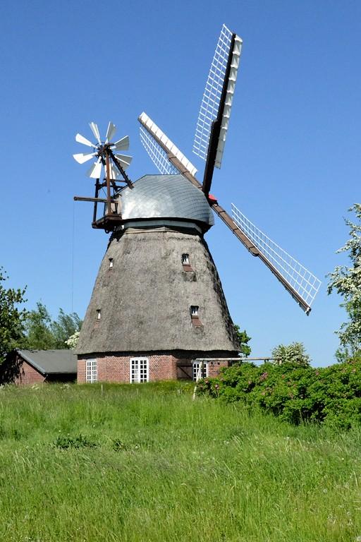 Windmühle Nüebelfeld