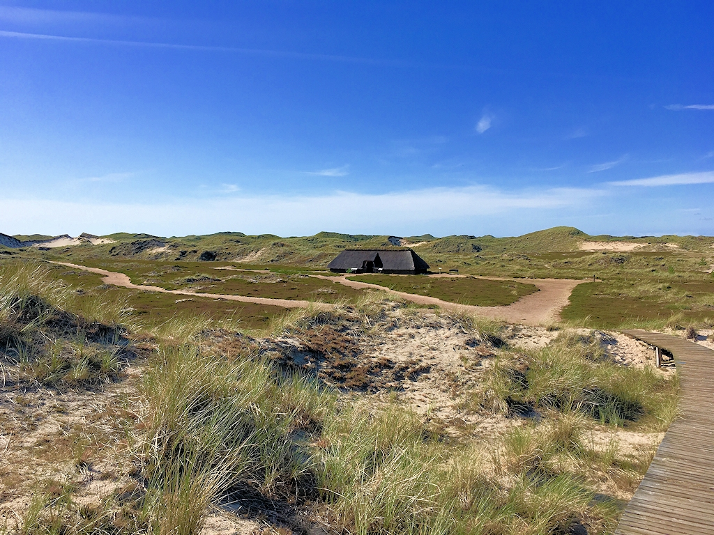 Steinzeithaus in den Dünen auf Amrum