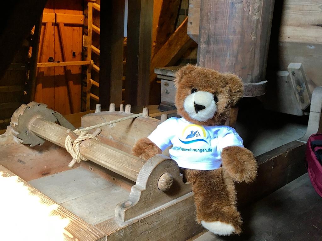 Der Urlaubär besichtigt die Windmühle