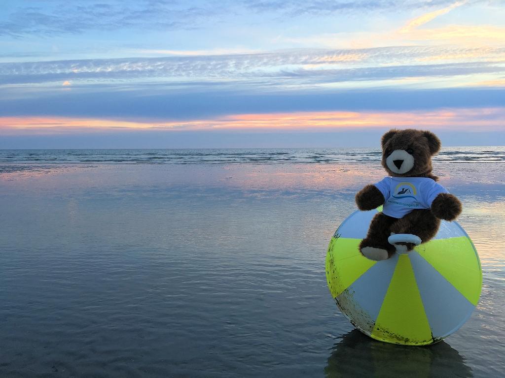 Der Urlaubär im Wattenmeer vor Sankt Peter-Ording