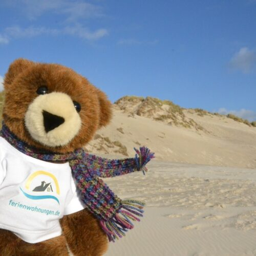 Der Urlaubär genießt den Wind am Sandstrand