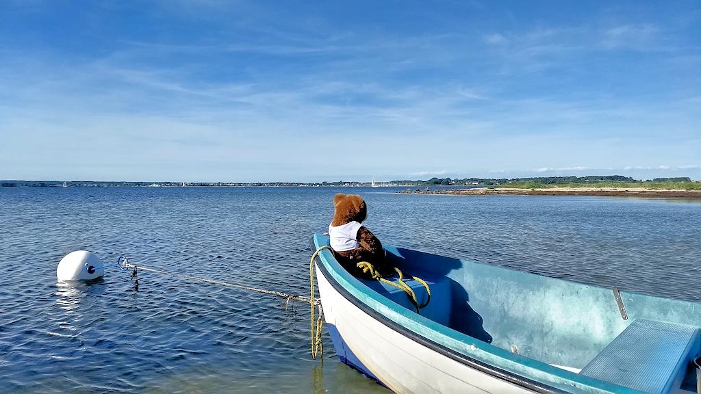 Ausblick auf Holnis Spitze vom Wasser aus