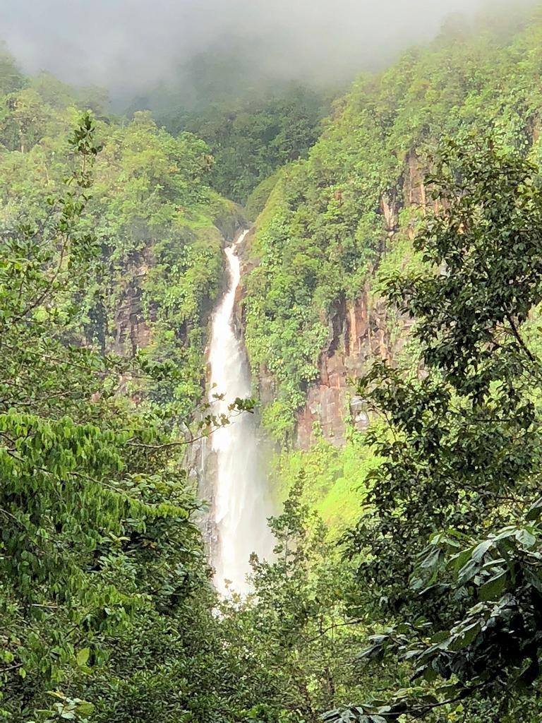 Wasserfall auf Guadeloupe
