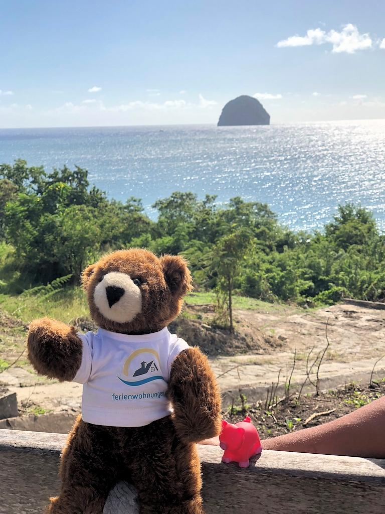 Urlaubär und Glücksschweinchen auf Martinique