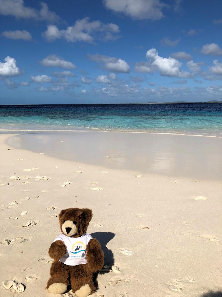 Am Karibikstrand auf Bonaire