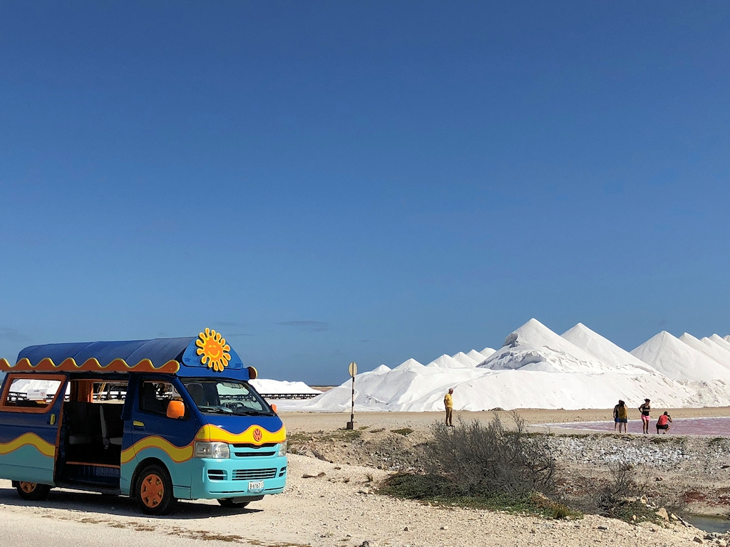 In den Salinen auf der Insel Bonaire