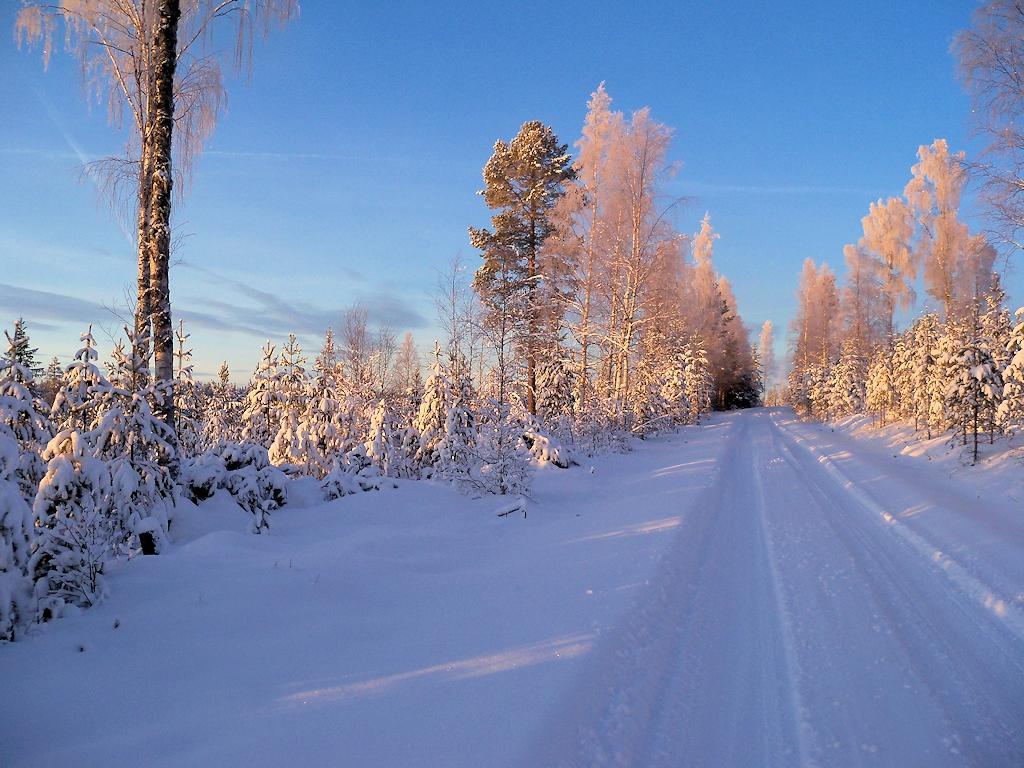 Schwedisches Wintermärchen - Winterlandschaft in Schweden