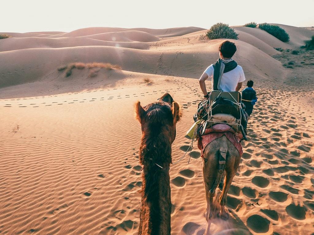 Kamel-Safari Abenteuer in der Wüste Indiens