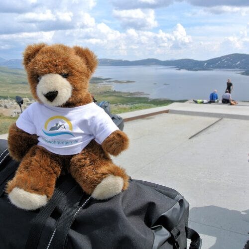 Der Urlaubär auf Entdeckungsreise im Süden von Norwegen