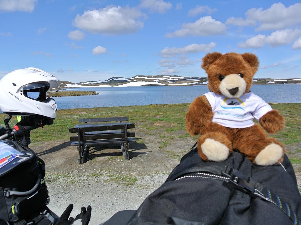 Fjordnorwegen mit dem Motorrad - Im Nationalpark Hardangervidda