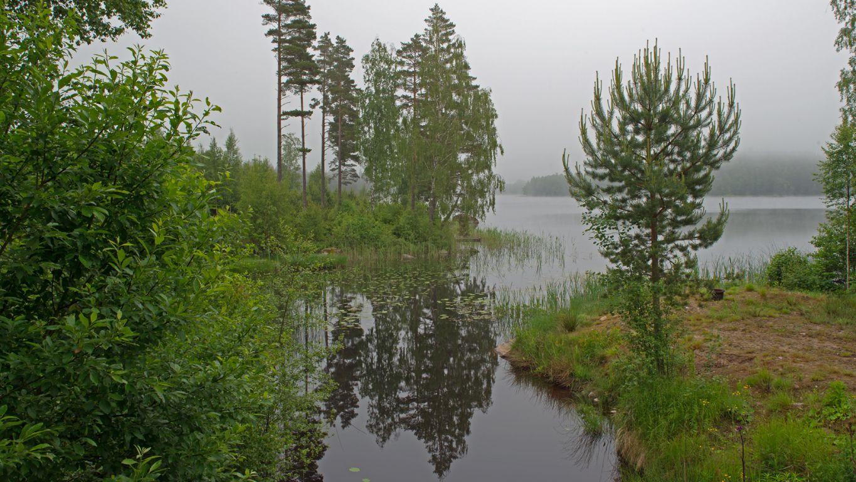 Regenstimmung am See