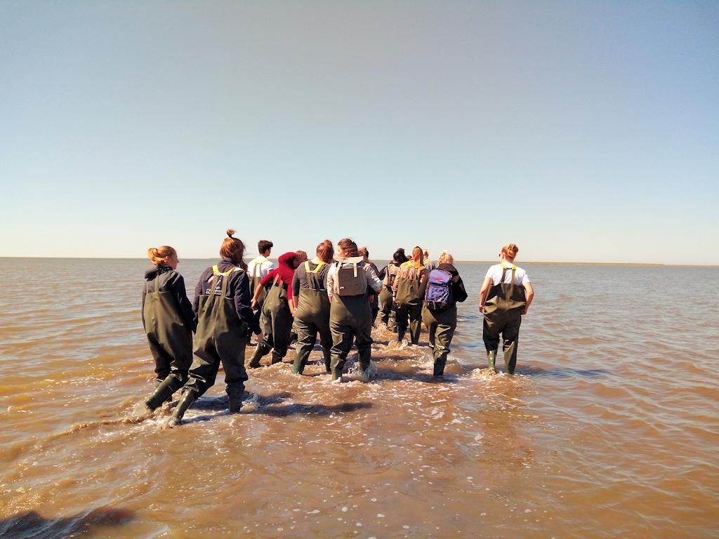 Führung durch das Wattenmeer