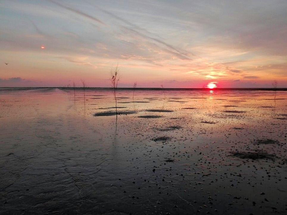 Sonnenuntergang im Wattenmeer bei Mandø