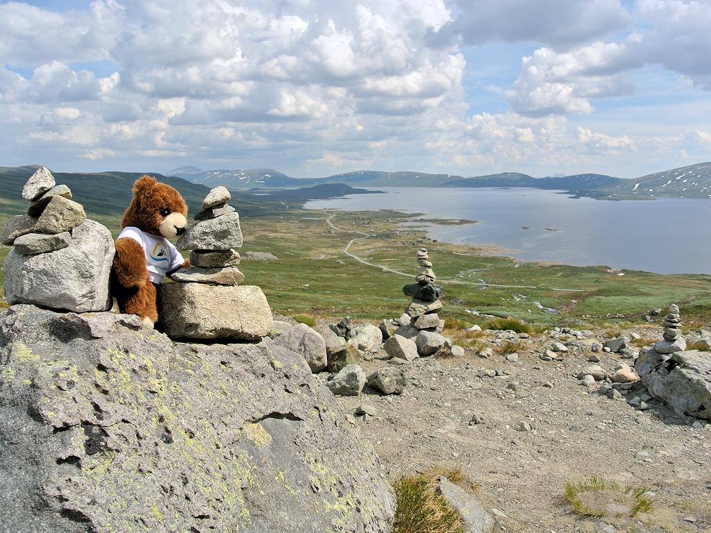 Der Urlaubär an der norwegischen Landschaftsroute Valdresflye