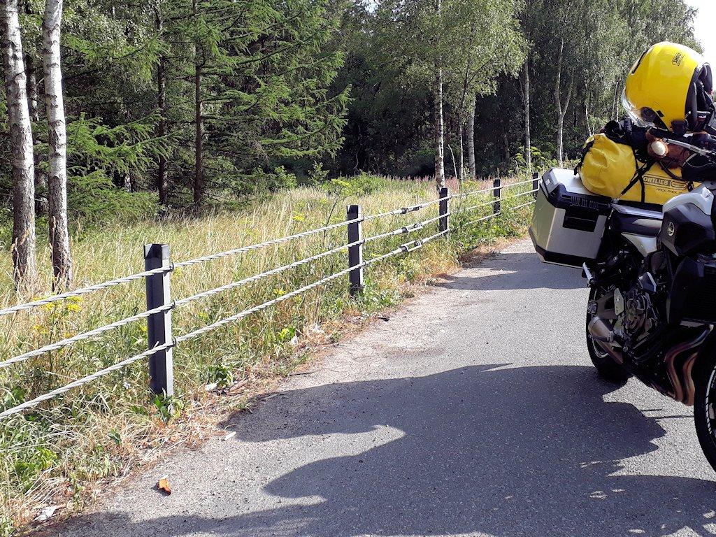 Leitplanke in Schweden
