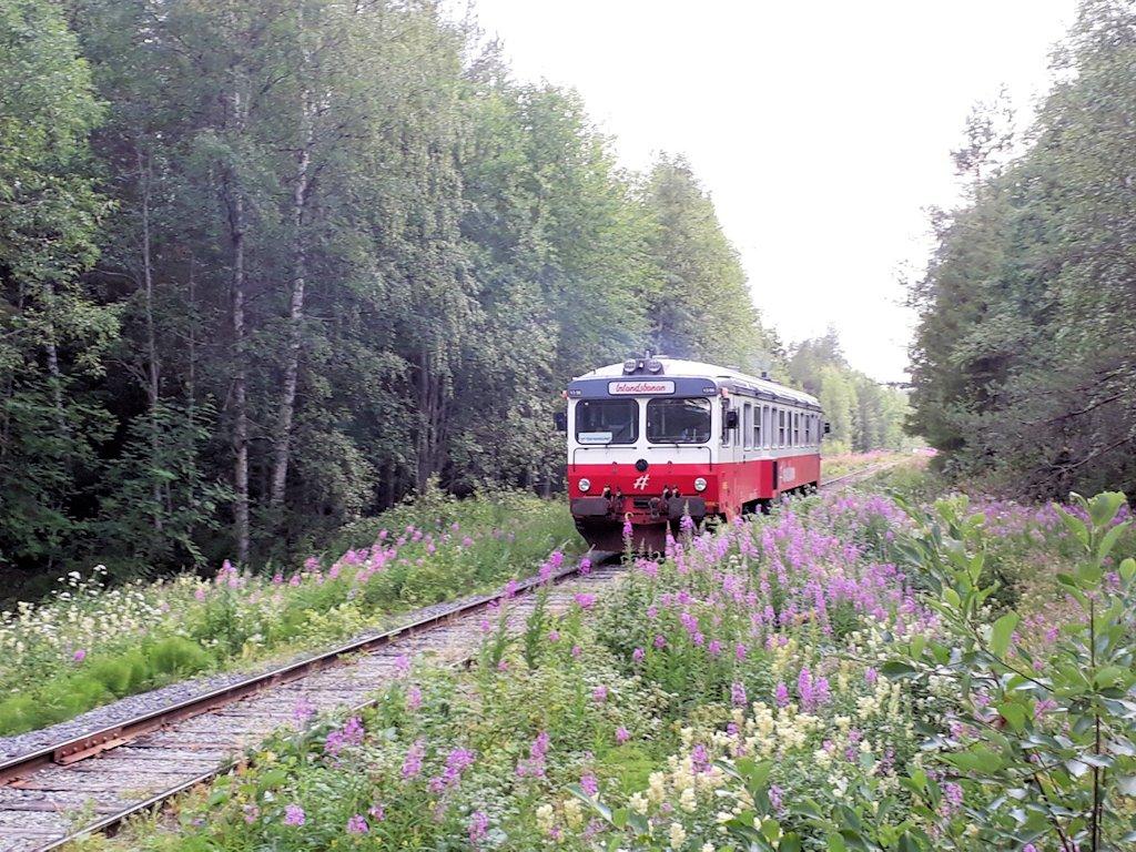 Zug der Inlandsbanan