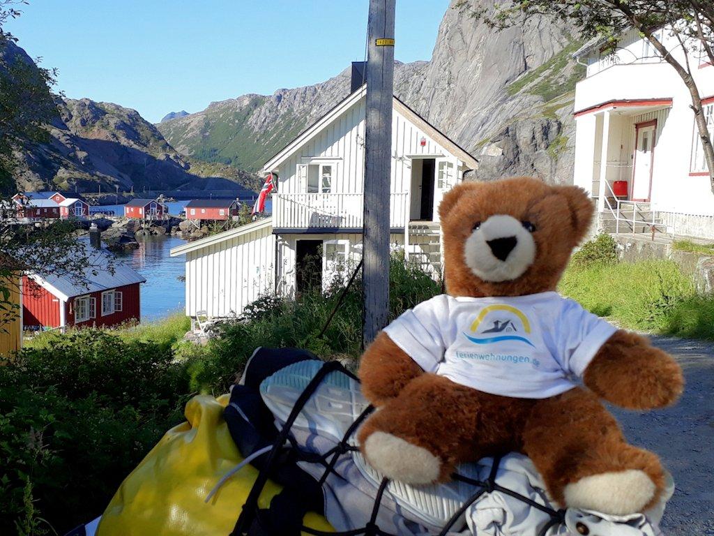 Der Urlaubär an der Bucht in Nusfjord