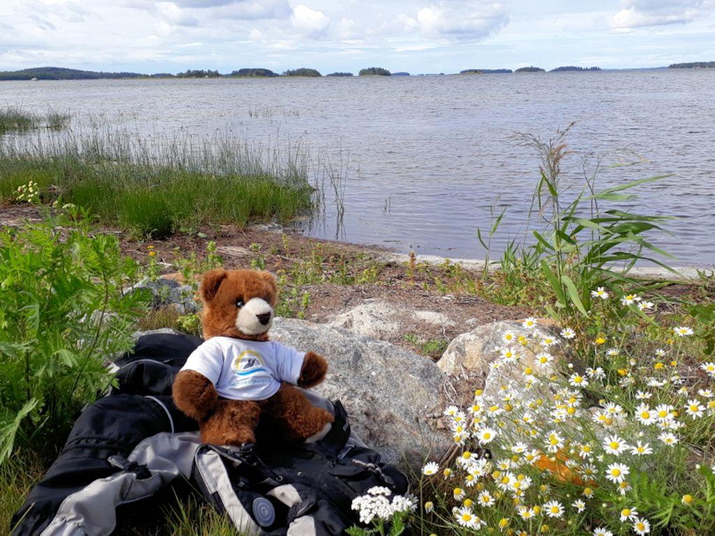 Der Urlaubär am Saimaa-See