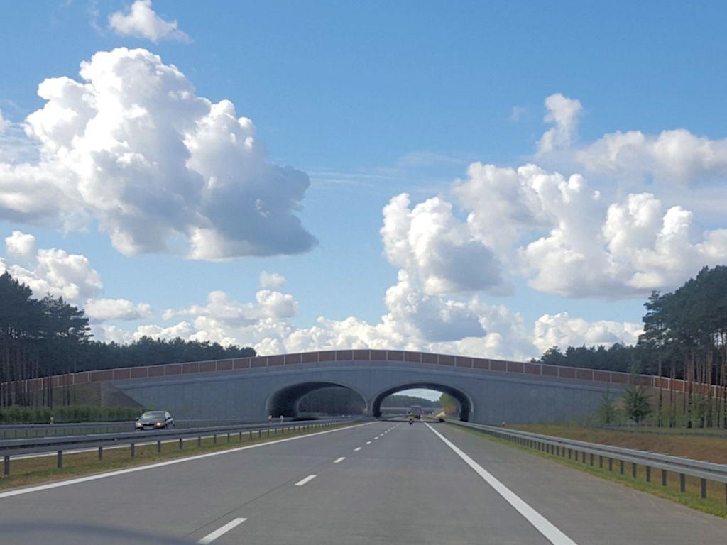 Wildbrücke in Polen