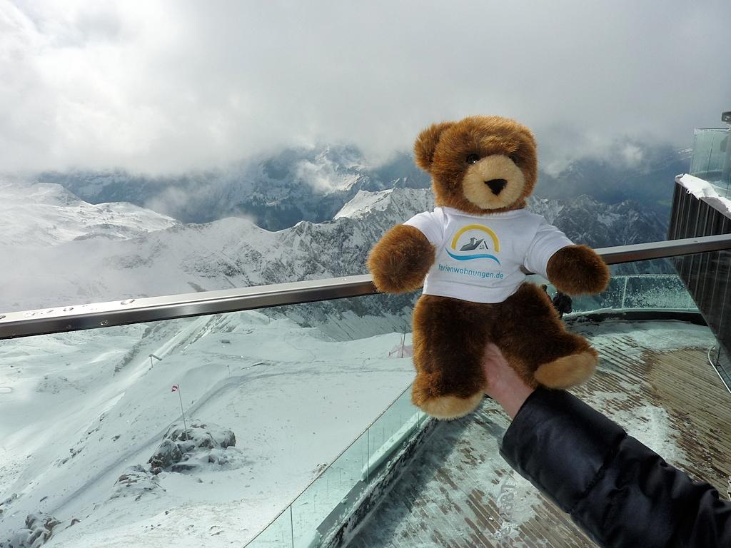 Urlaubär in der Gipfelstation des Nebelhorn