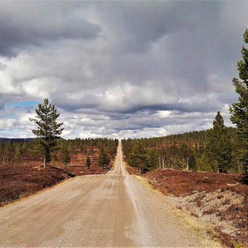 Schotterwege ich Schweden
