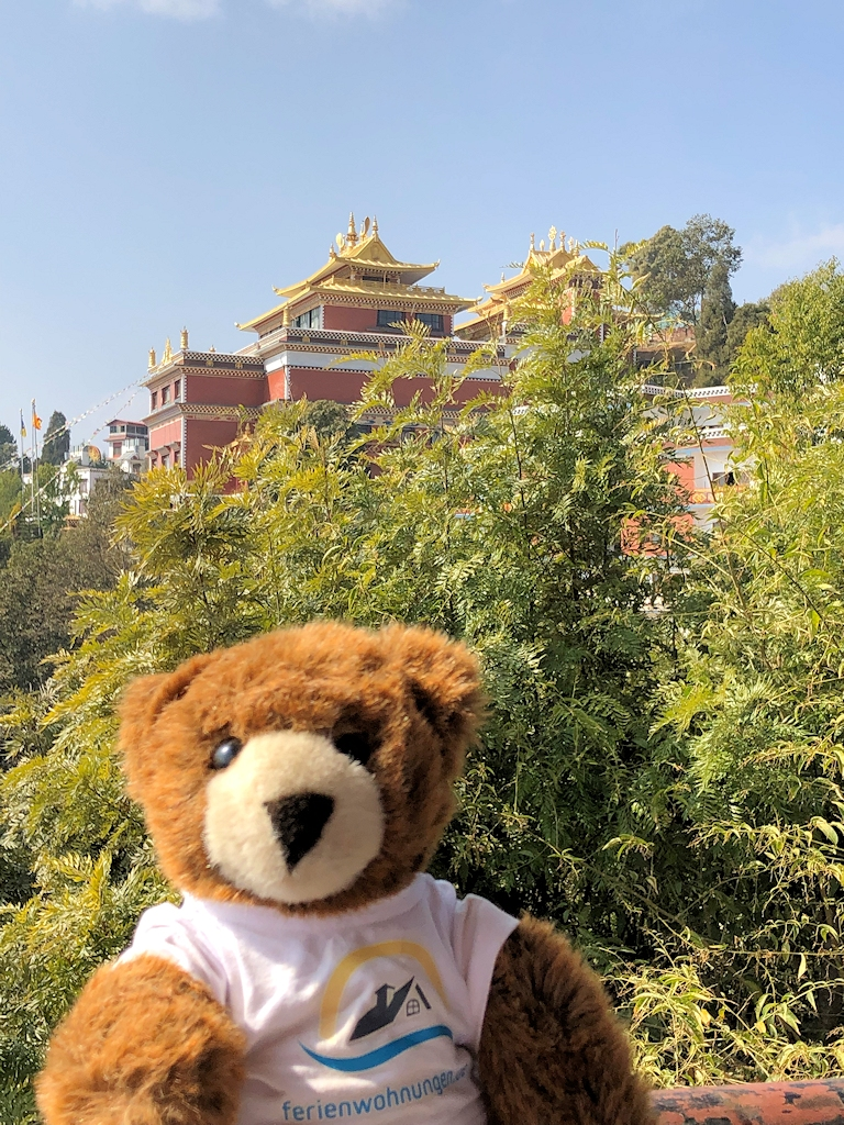 Der Urlaubär am Kloster Namobuddha